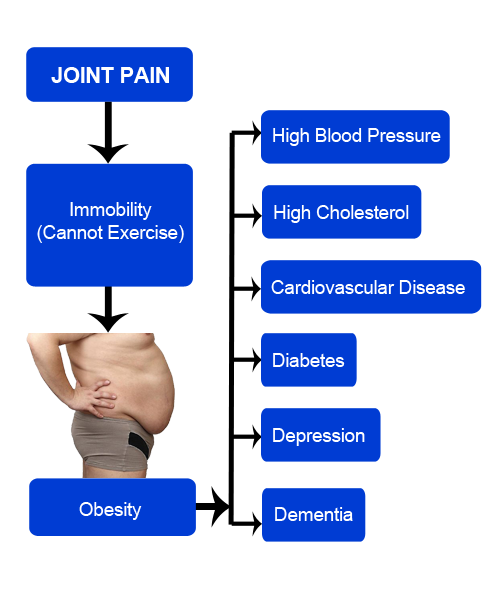 joint immobility